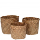 wholesale Decoration: Plant Basket Celso , set of 3, with plastic inser